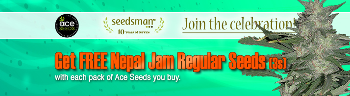 Seedsman ACE Seeds special offer