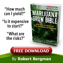ILGM free grow bible