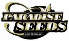free marijuana seeds from Paradise Seeds